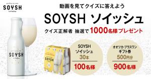 SOYSH(ソイッシュ)30本