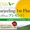 2016ダージリン・ファーストフラッシュを40名様にプレゼント!|日東紅茶