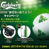 カールスバーグオリジナルグッズが当たる!EURO 2016 WEBで当てよう!キャンペーン