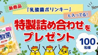 コイケヤ 特製詰め合わせ(新商品『乳酸菌ポリンキー』入り)を100名様にプレゼント!