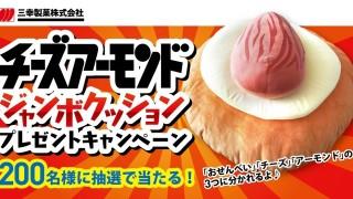 チーズアーモンド ジャンボクッションプレゼントキャンペーン|三幸製菓